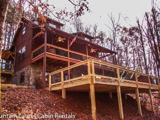 BEAR HAMMOCK- 4BR/3BA- LUXURY CABIN WITH A BEAUTIFUL MOUNTAIN VIEW, POOL TABLE/PING PONG, WET BAR, WOOD BURNING FIREPLACE, GAS & CHARCOAL GRILLS, HOT TUB, AND PET FRIENDLY! STARTING AT $175 A NIGHT!, Blue Ridge