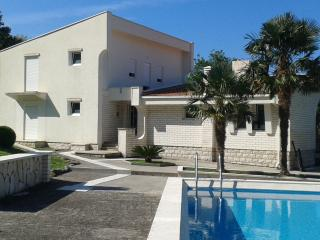 House with Swimming Pool, Stari Bar