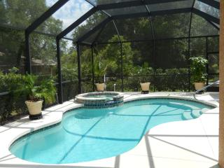 Beautiful Spacious 3BR+Den Pool & spa, North Port