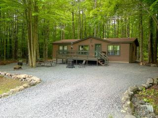 Arrowhead Lake/Pocono Lake Log Cabin!!!!, Lago Pocono
