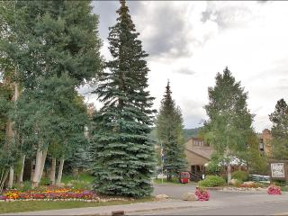 Heated Pool & Hot Tubs, 2 Tennis Courts - Free Year Round City Bus Service (2942), Steamboat Springs