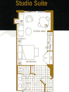 Floor plan for our luxury penthouse