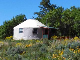 Caribou Yurt B&B