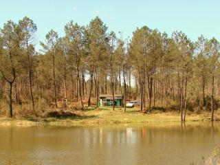 Cuckoo Lake - Forest Fishing and Nature Holidays, Saint-Aulaye