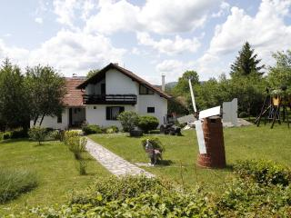 Countryside House Jandric, Dreznik Grad