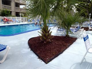 Beautiful SHORE DR. AREA 2/2, NEW KING BED, Pools,