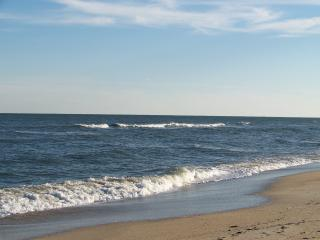209 - Pet friendly, Ocean-front, Stunning views, Carolina Beach