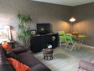 appartement idéal pour tourisme et detente, Blanquefort