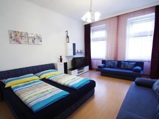 R 12 Modernes 3-Zimmer Apartment Exclusive, Viena