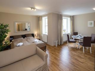 Wenceslas Square - Studio Apartment, Prague