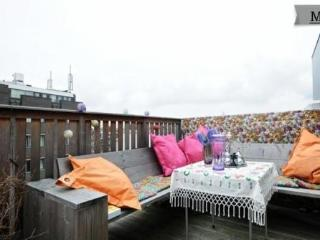 495 Sunny and Nice 3 rooms Apartment Roofterrace