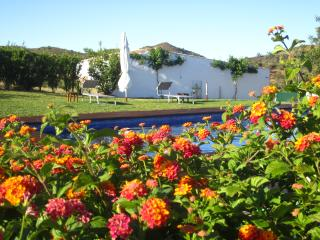 Tavira farm house 1