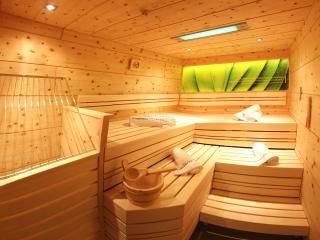 Apart Central: 3SZ FeWo mit privater Sauna und Garten, direkt am Schilift