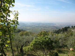 Lovely Location on Hillside overlooking Florence,