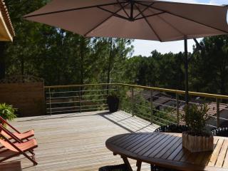 jolie maison avec 2 belles terrasses bois + jardin