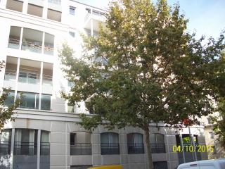 APPARTEMENT T2 50 M MAIRIE  BORD DU LEZ IDEAL a 10 km de la mer