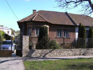 House near Budapest Centrum with garden