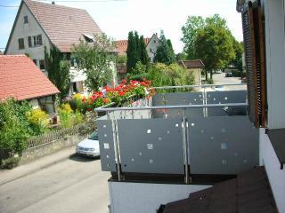6 Zimmer Wohnung mit Terrasse, Pliezhausen