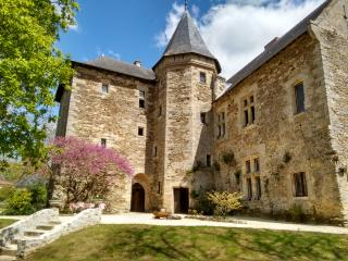 Holiday Château in the Garden of France, Faye-d'Anjou