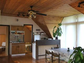 Budatava Appartemente near to the lake in the roof, Balatonalmadi