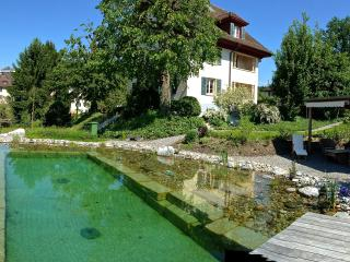 Big cosy 2 1/2  room Garden Apartment with Pool, Lucerne