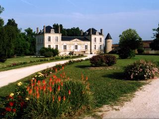 Chateau in the vineyards of Bordeaux