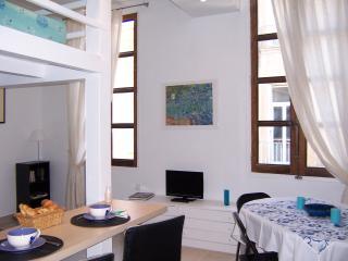 appartement  de charme rue Manuel centre historique Aix  2-4 p