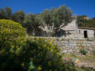 Beautiful sea cottage in 5Terre National Park, La Spezia