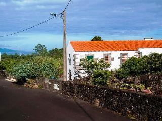 PTZ00031--Paradise --Azores of course, Pico