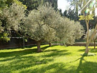 Casa de campo con piscina y amplia zonas verdes