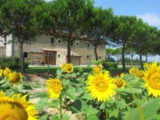 Terra di Cortona old tuscany farmhouse