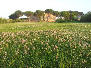 AGRITURISMO TERRA DI CORTONA, Cortona