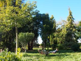 Villa Rosita-Huerto de Montesinos