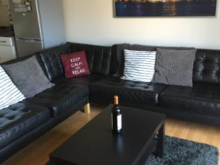 Modern and spacious festival apartment., Edinburgh