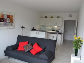 Apartment central/clean/modern/WIFI/balcony, Munich