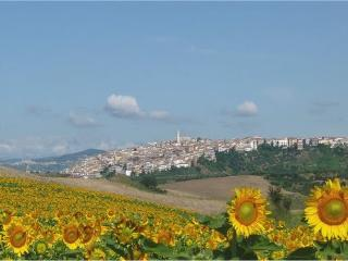 Italy long term rental in Molise, Guglionesi
