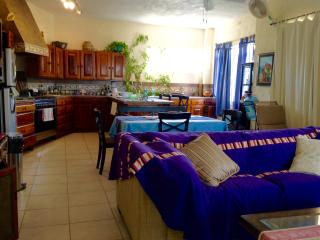Villa Paloma -Spacious two bedroom ocean view home, La Manzanilla