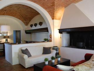 Charming farmhouse apartment near Florence, Castelfiorentino