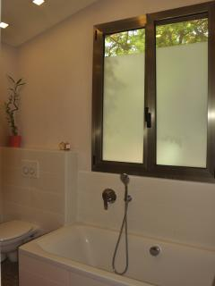Main bathroom - shower & bathtub