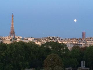 VUE ABSOLUMENT EXCEPTIONNELLE SUR PARIS