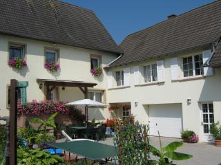 Beau Gîte près STRASBOURG, Duntzenheim