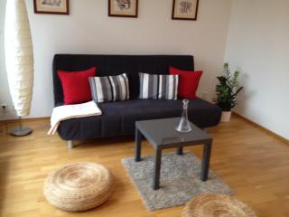 Spacious new flat 15 minutes from old town, Prague