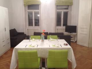 Charming Apartment in City Centre, Viena