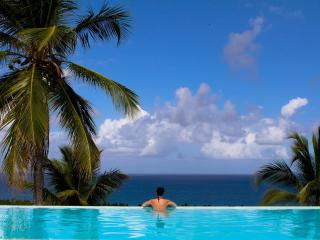 Relax ammirando le palme e  l'oceano