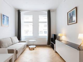 New Stylish apartment in the historical center, Praga