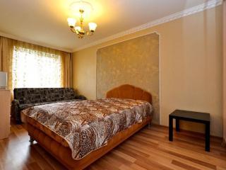Apartment in Saint-Petersburg #2955, Shushary