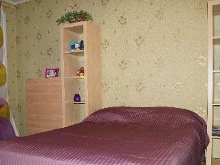 Apartment in Saint-Petersburg #2961, Shushary