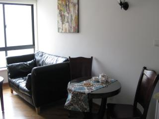 Nice apartment 2 rooms in the heart of Shanghai, Shanghái