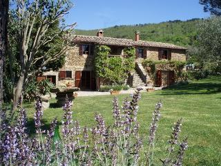 Casa Contadina, cozy villa among Cortona hills