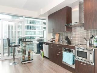 MODERN Suite in Downtown Toronto, King West